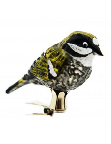 Gul-sort fugl på klips