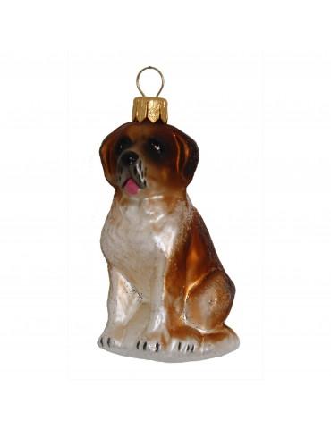 Skt. Bernard hund